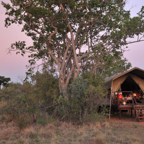 Kwafubesi Tented Camp Tented suite