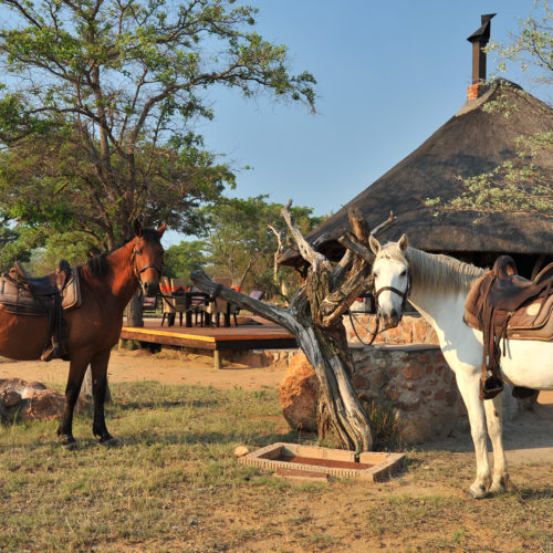 Kwafubesi Tented Camp horseback safari