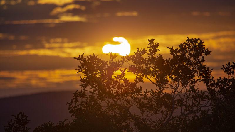 Kwafubesi Tented Safari sunset