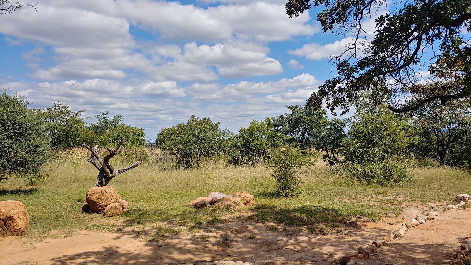 Kwafubesi Tented Camp – Fransje van Riel – Night 2